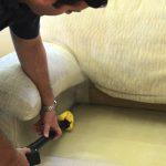 Какие виды паразитов и бактерий могут жить в диване и что с этим делать?